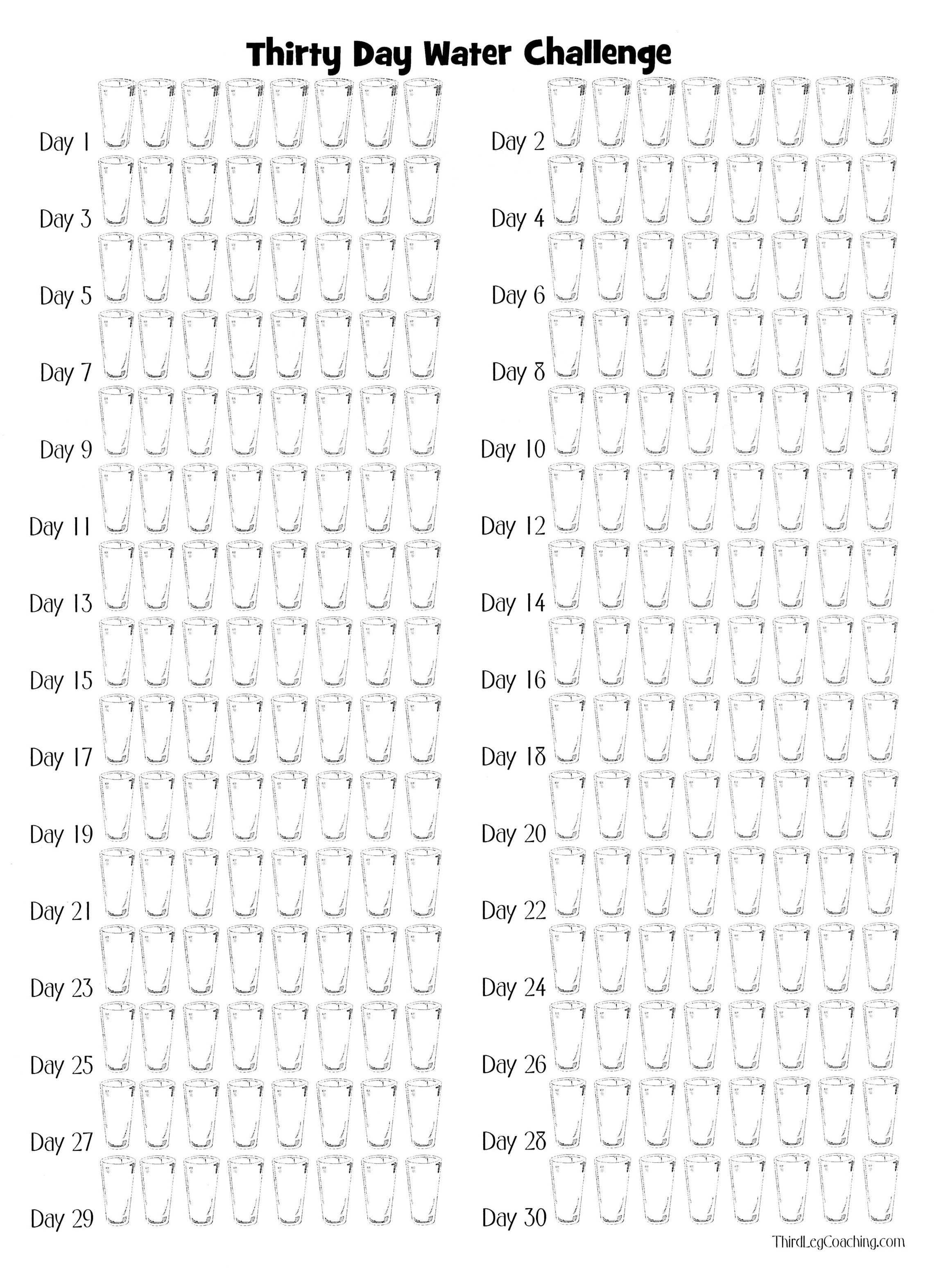 Water Challenge Printable to make sure I drink enough