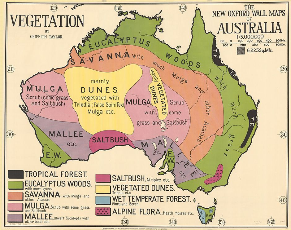 1920 australian government map of vegetation used in schools the new oxford wall maps of australia cartographic material gumiabroncs Images