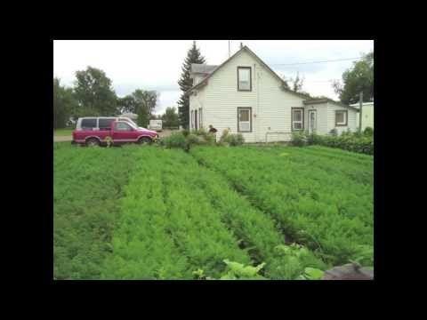 How to farm - backyard farming on under an acre - Small Plot