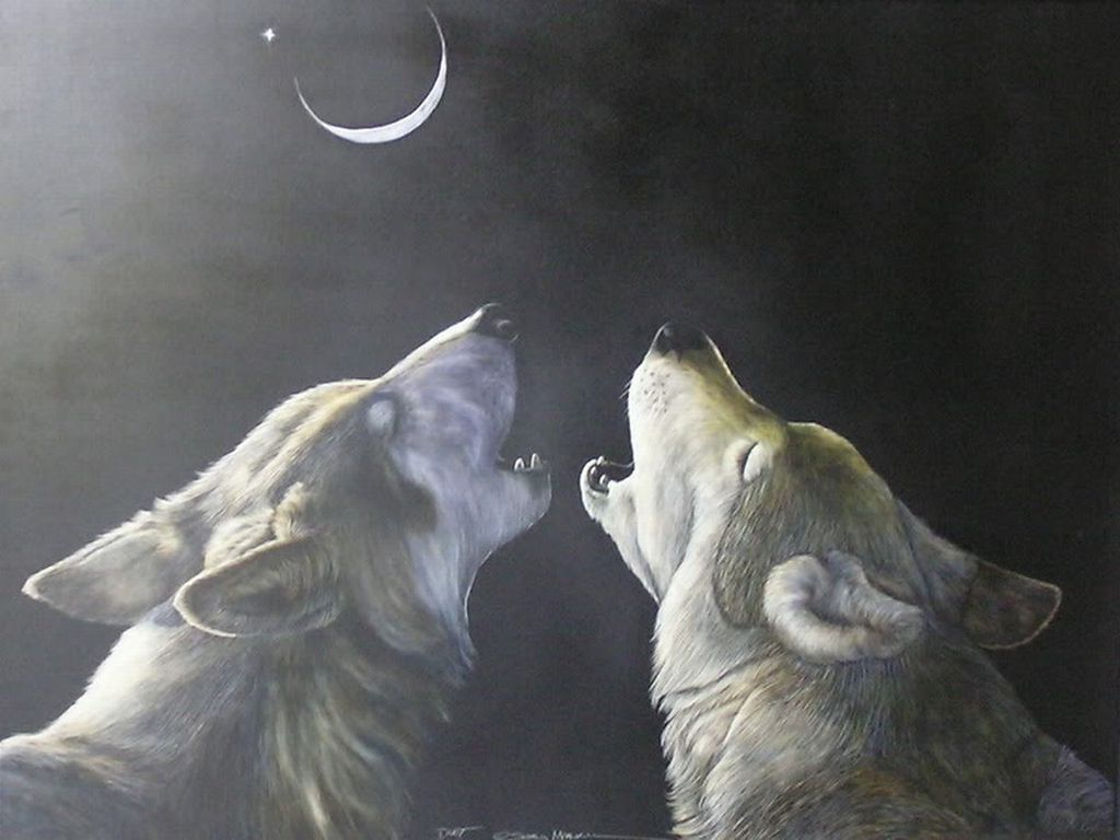 Two Wolves Wolf Artwork Wolf Wolf Art