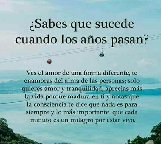 El Verdadero Amor Frases Positivas Pinterest Amor Frases Y