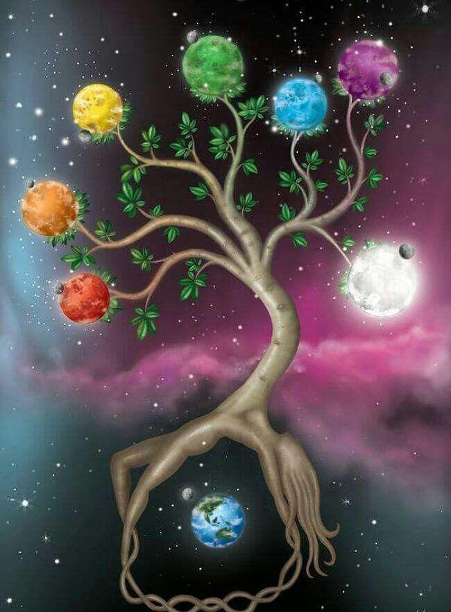 могу энергия дерева картинки если