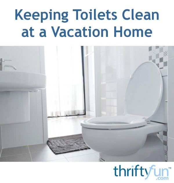 Keeping Toilets Clean At A Vacation Home Toilet Cleaning Vacation Home Cleaning