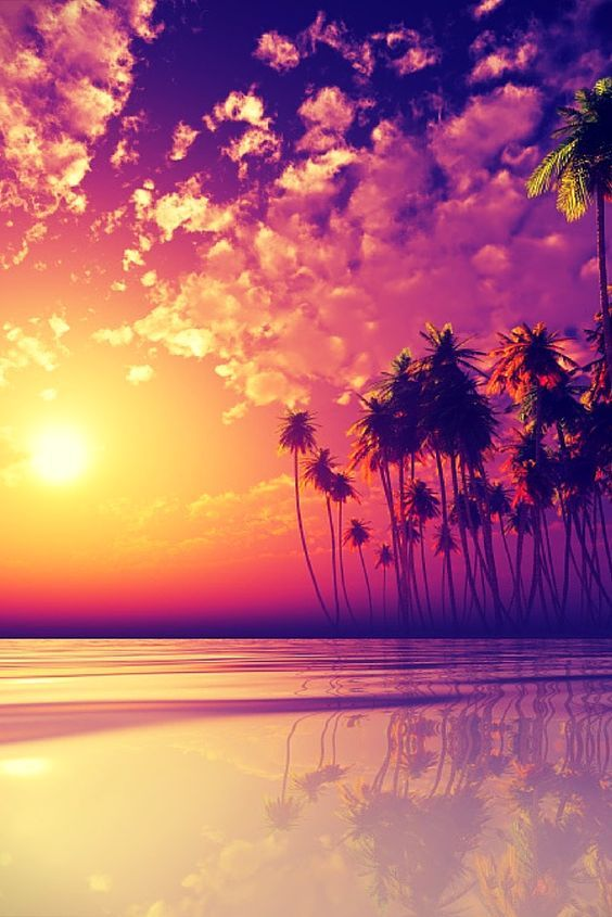 Good Morning Sunshine Its A New Day With New Possibilities Fiji