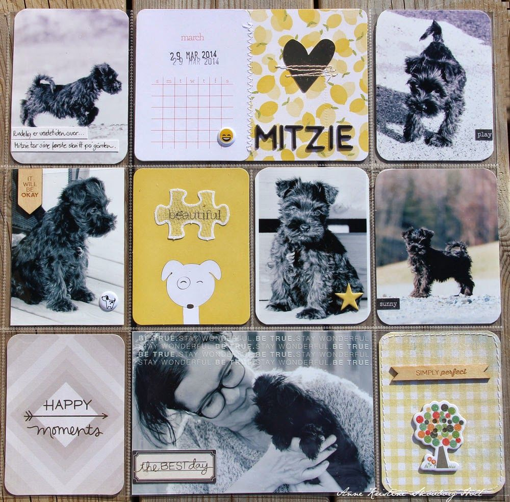 Anne's paper fun: Project Life