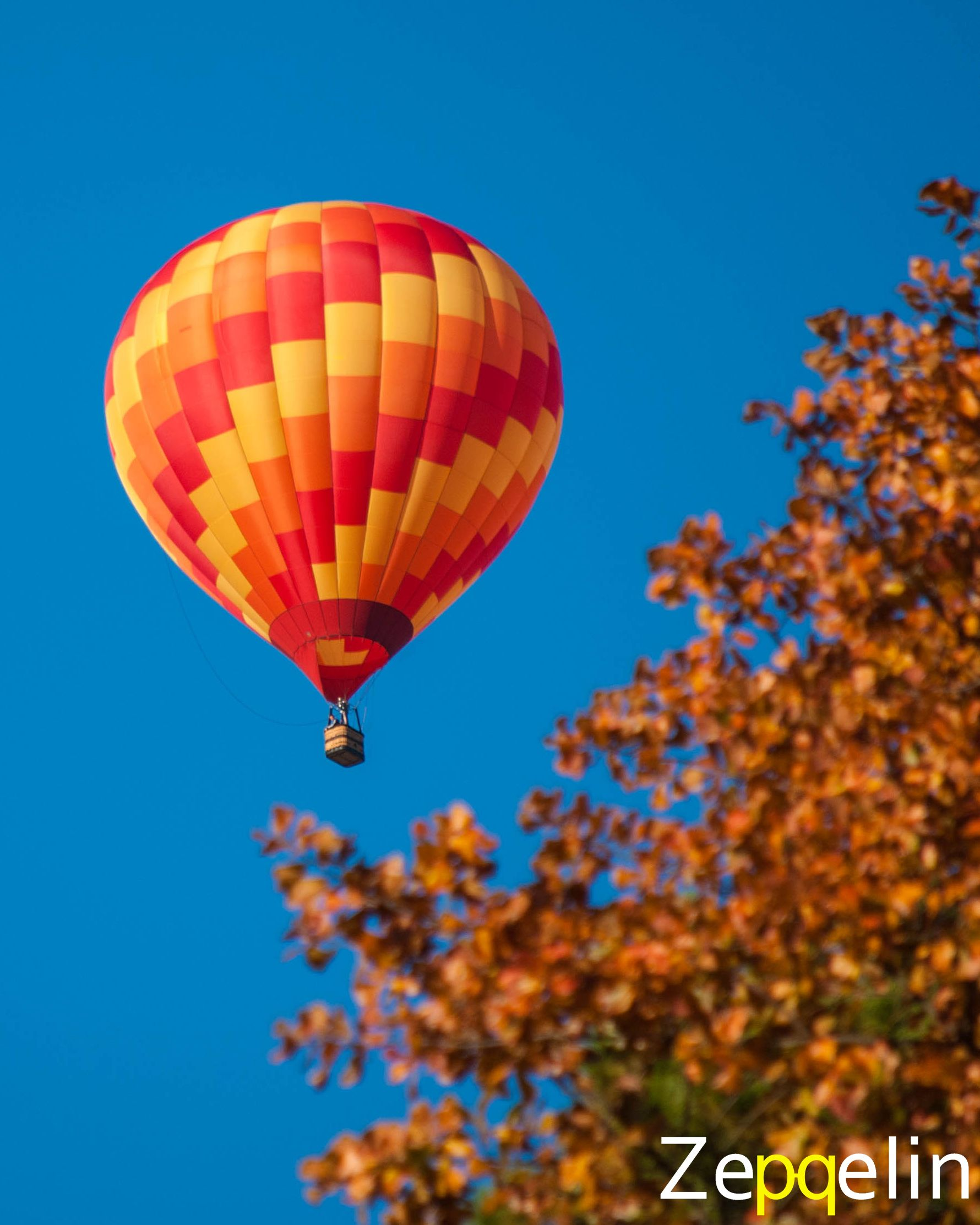 Catch Best Price Hot Air Balloon Tours with