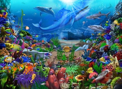 ROYCE McCLURE LIVING SEA DOLPHINS FISH POSTER PRINT 22x34 NEW FREE FAST SHIPPING