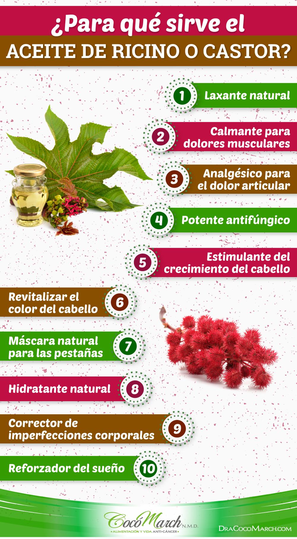 10 Beneficios Y Usos Del Aceite De Castor O Ricino Aceite De Castor Aceite De Ricino Usos Aceite De Ricino
