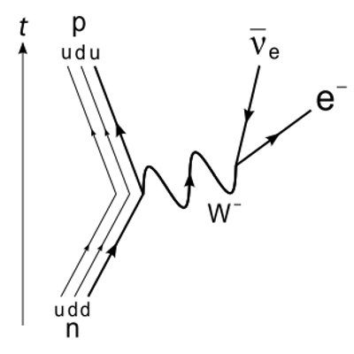 Neutron Quantum Physics Physics Feynman Diagram