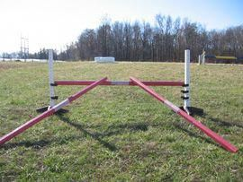 Starting a young horse over fences... Lots of good suggestions on how to help yo...