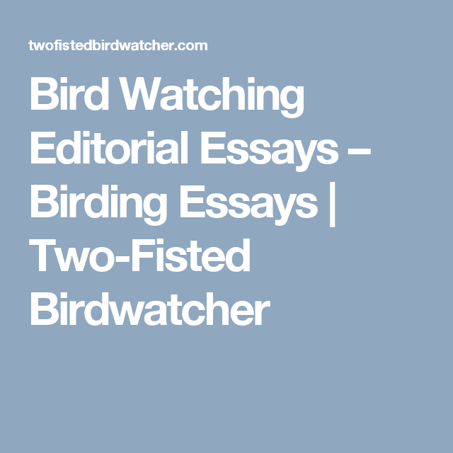 Bird Watching Editorial Essays – Birding Essays | Two-Fisted ...