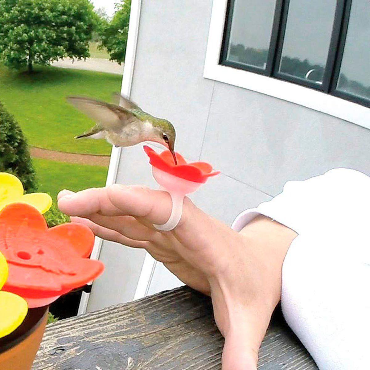 14 Amazing Hummingbird Feeders for Your Backyard Stuff
