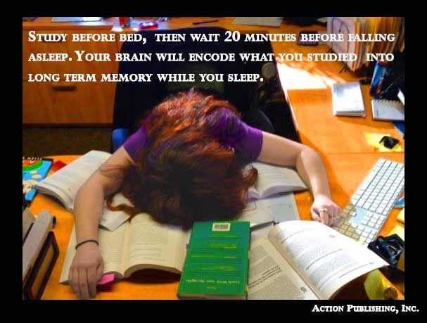 Long-Term Memory - Brown University