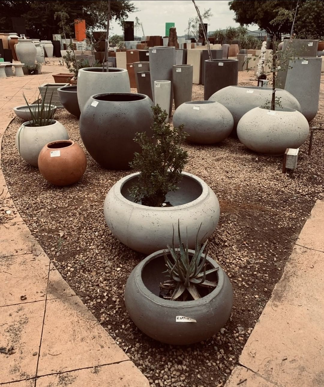 gardencenter#nursery#gardenpots#planters#containerplanting