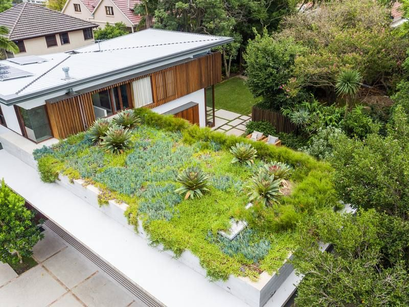 Rooftop Garden Rooftop Garden Roof Garden Garden