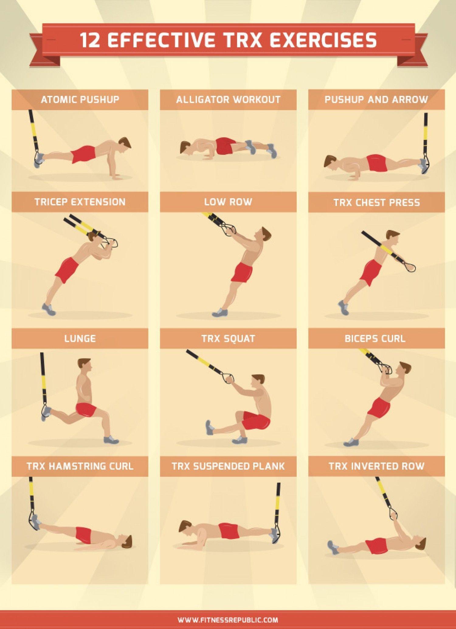 Trx Exercises Pdf : exercises, Workout, WorkoutWalls