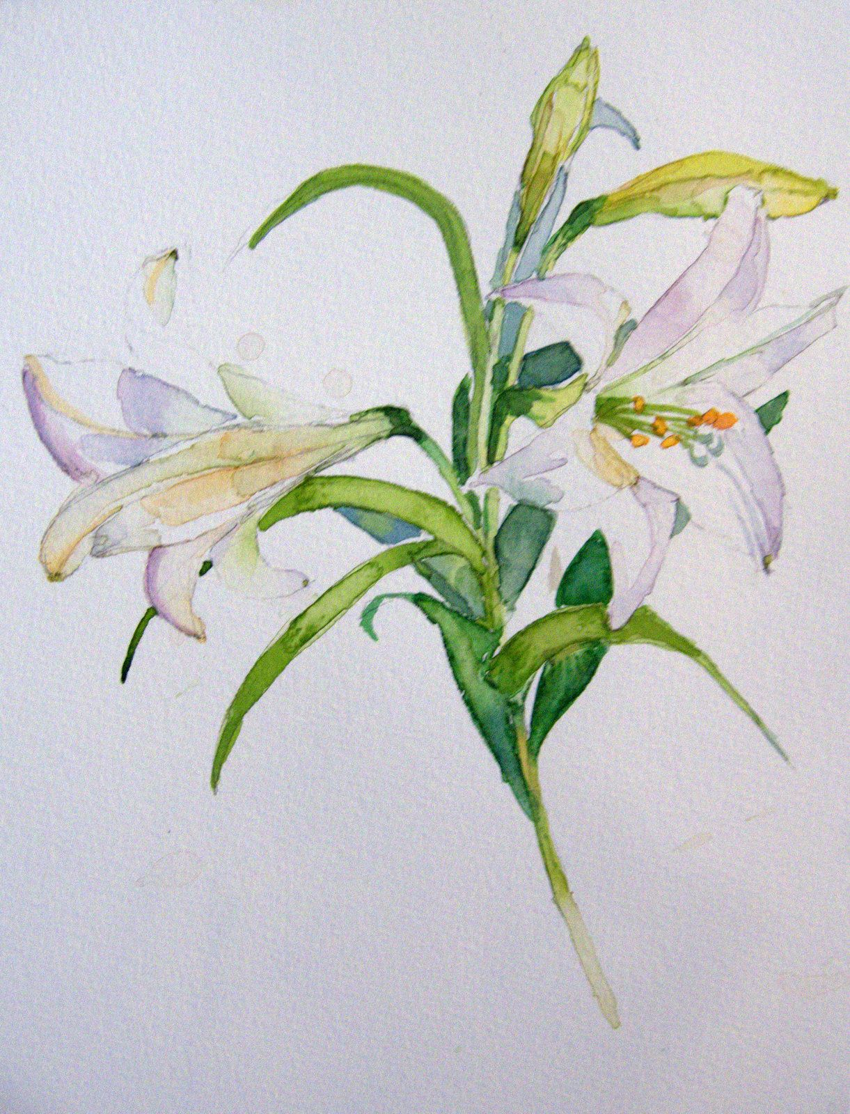 Easter lily watercolor tattoo might get this for my mema tattoos easter lily watercolor tattoo might get this for my mema izmirmasajfo