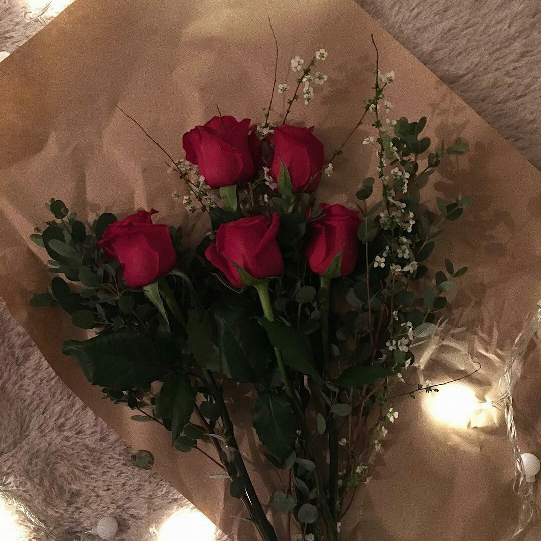 Pin by margo c on bright flowers pretty flowers peach romance plants wallpaper pink sky tumblr red roses flowers feelings night flower cherry fruit roses izmirmasajfo