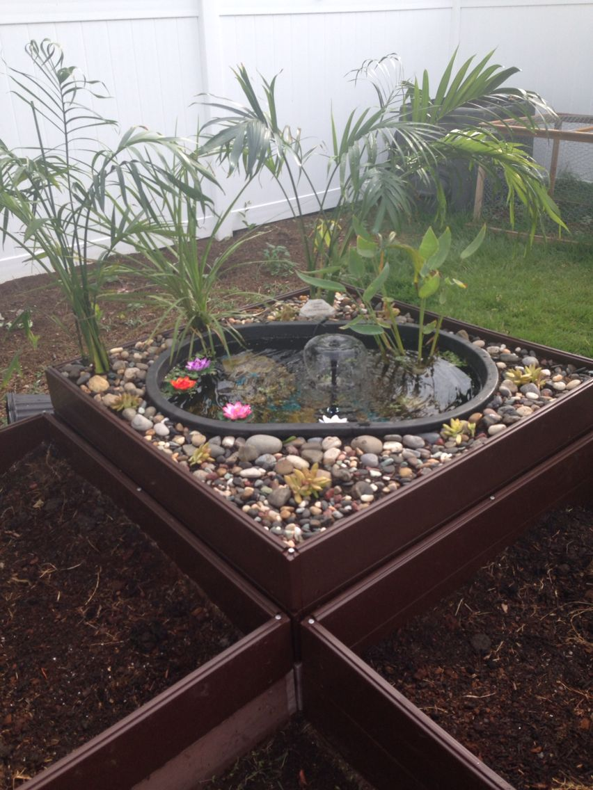 """Diy backyard pond. I used raised garden bed, and a 55 gallon horse trough (about $75). In the pond I have gravel from an old tank and a pond plant I bought for $10. There's a """"container"""" fountain/ filter I paid $20 for from Lowes. Around the pond I put stones and succulents ($30 approx) and a Palm tree I found at the local supermarket for $15. I plan on adding fish when the water is ph-ready for it. But they will need to be indoors for winter. The trough isn't deep enough. I LOVED this…"""