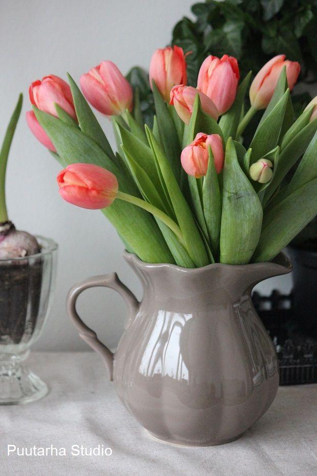 Tulppaaneja ystävänpäiväksi! @Asuntomessublogit