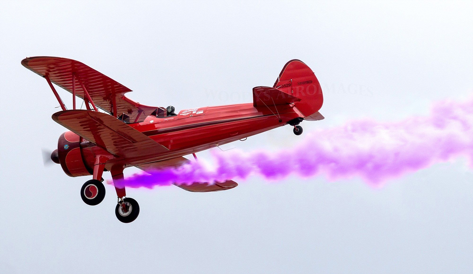 Is there anything Fabuloso can't do? Pest control, Plane