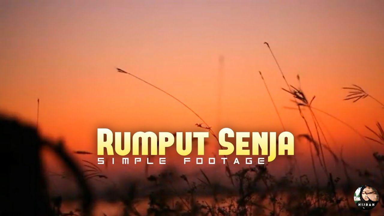 Sunset, Grass Nature Landscape - Background Video Puisi - YouTube    Pemandangan, Alam Yang Indah, Gambar