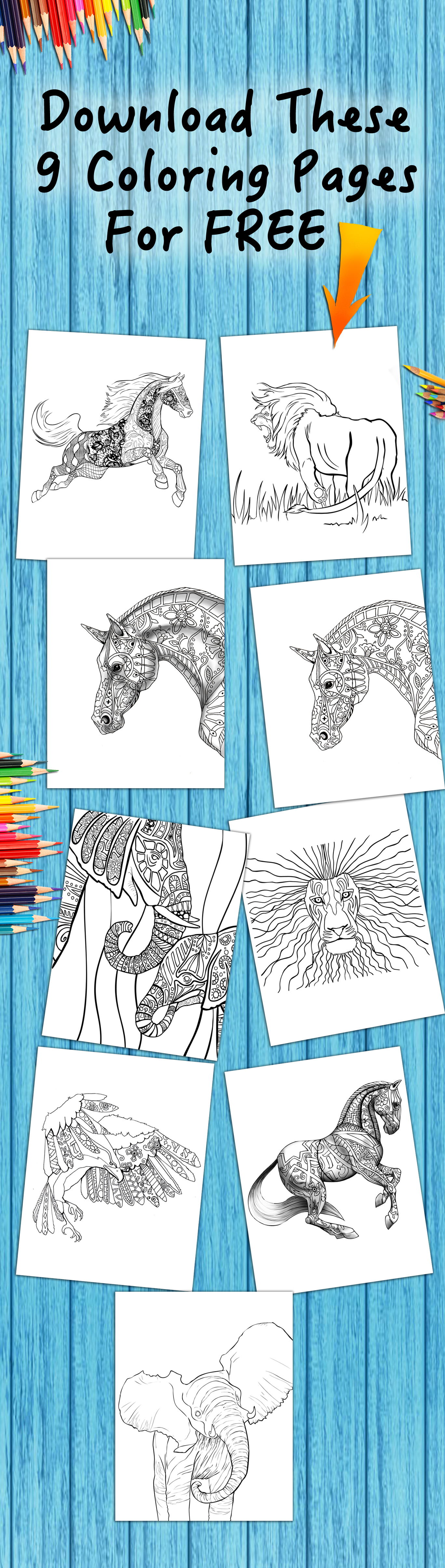 Colorful coloring book for adults download - Download Free Adult Coloring Pages More Coloring Pages Every What Colors Would You Use