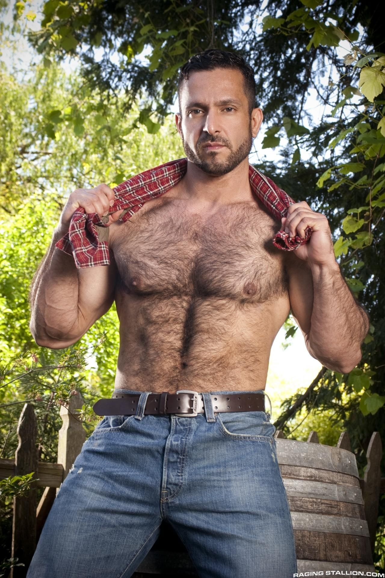 Adam Champ pin on hairy men