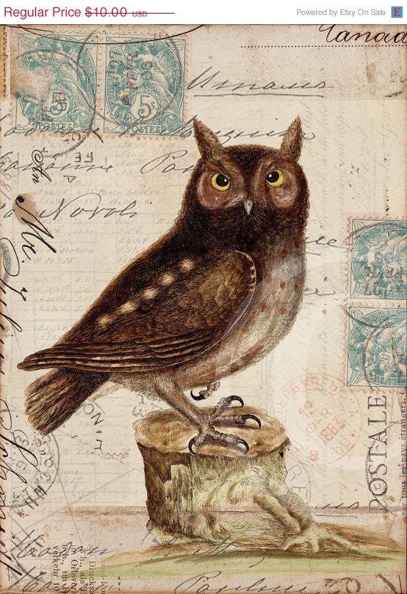 Antique Bird Collage Print - Owl