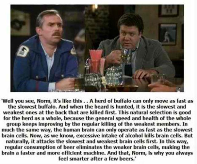 Buffalo theory cheers episode