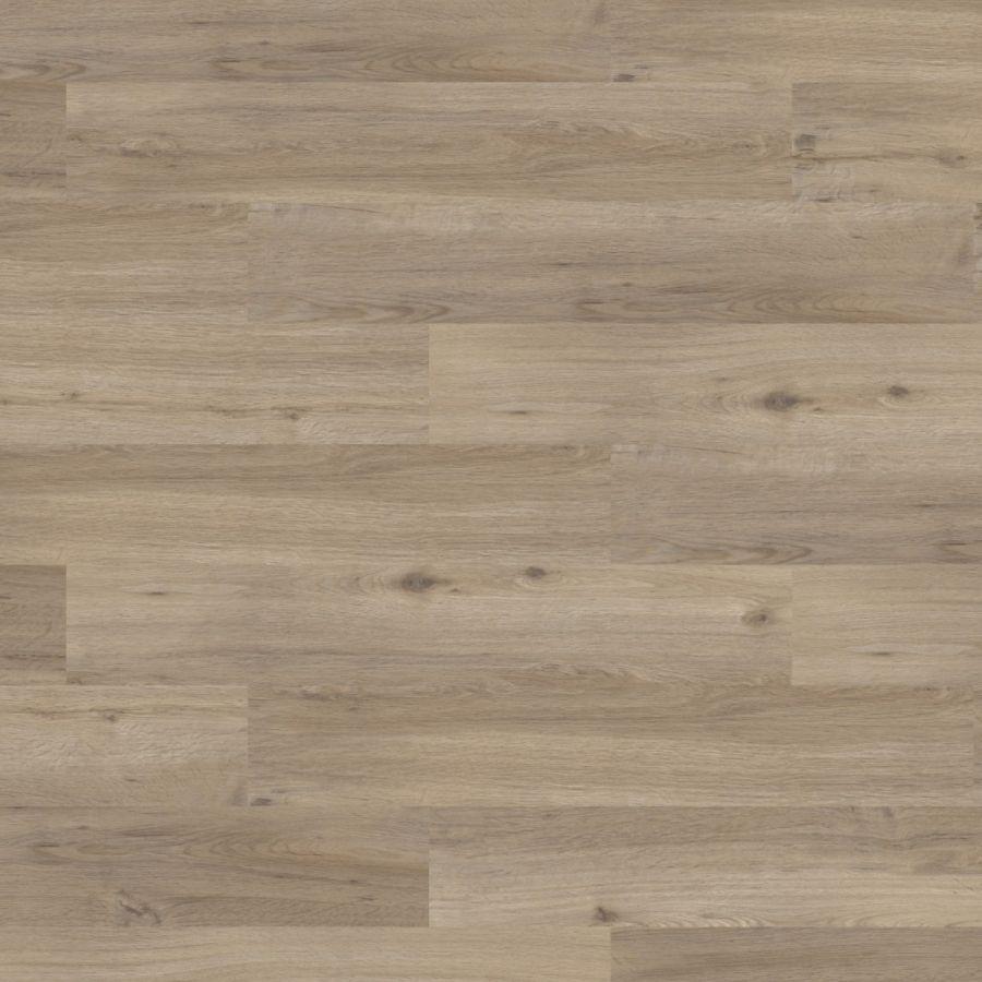 Wood 1 Oak 材料 Wood Parquet Texture Parquet Flooring