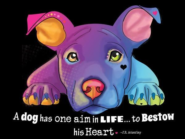 "Image result for ""a dog has one aim in life to bestow his heart"" images"