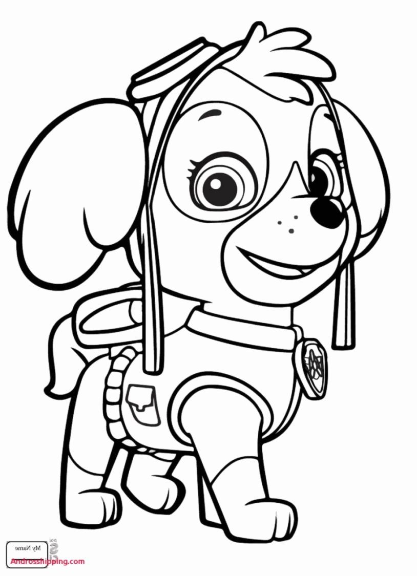 Paw Patrol Coloring Book Awesome Coloring Book Paw Patrol Coloring Book Pages With Crayons Paw Patrol Coloring Pages Paw Patrol Coloring Nick Jr Coloring Pages