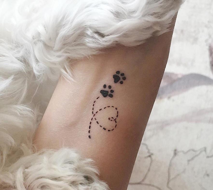 Photo of Les 80+ tatouages d'impression de pattes les plus mignons de tous les temps | Les pattes