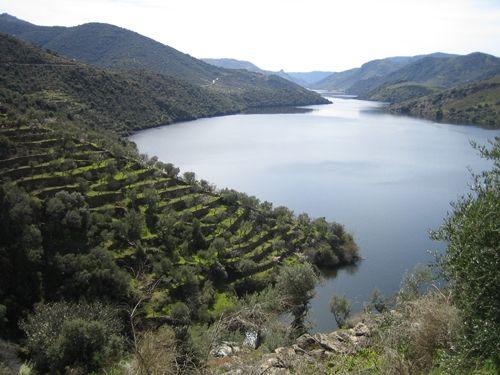 Terrazas Fluviales Buscar Con Google Terrazas Y España