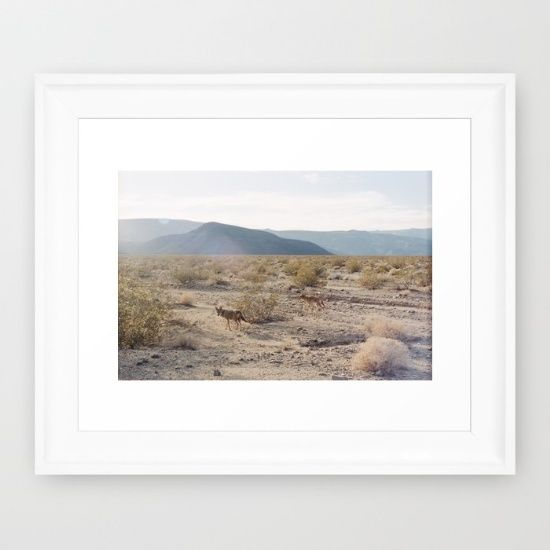 Small Homefront Design Ideas: Panamint Valley Coyotes Framed Art Print By Kevin Russ