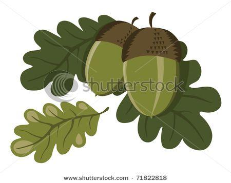 35++ Oak tree acorn clipart information