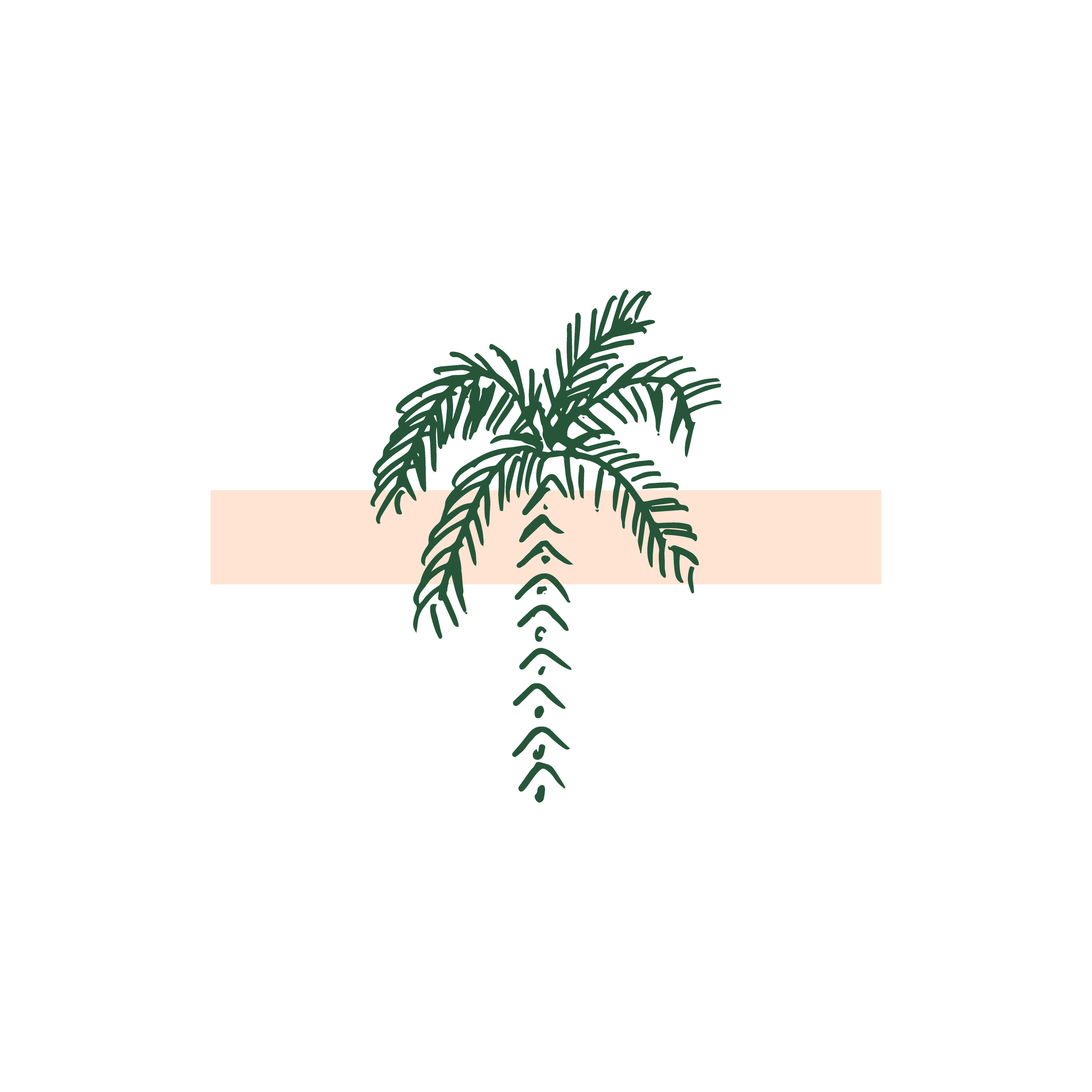 Palm Illustration Graphic For Minimal Boho Modern Logo Designed
