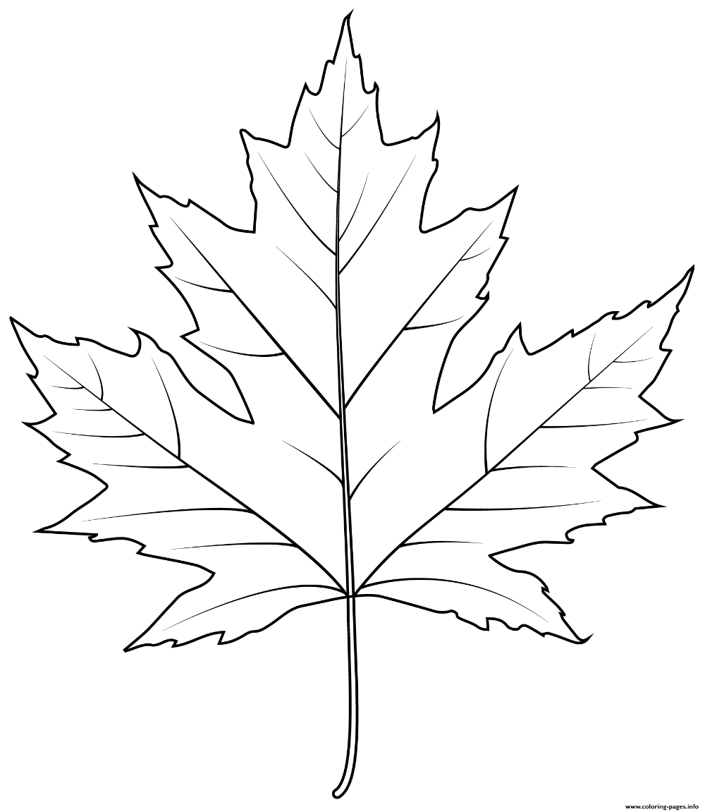 Png Leaf Black And White White Flower Png Black And White Gif Black And White Tree