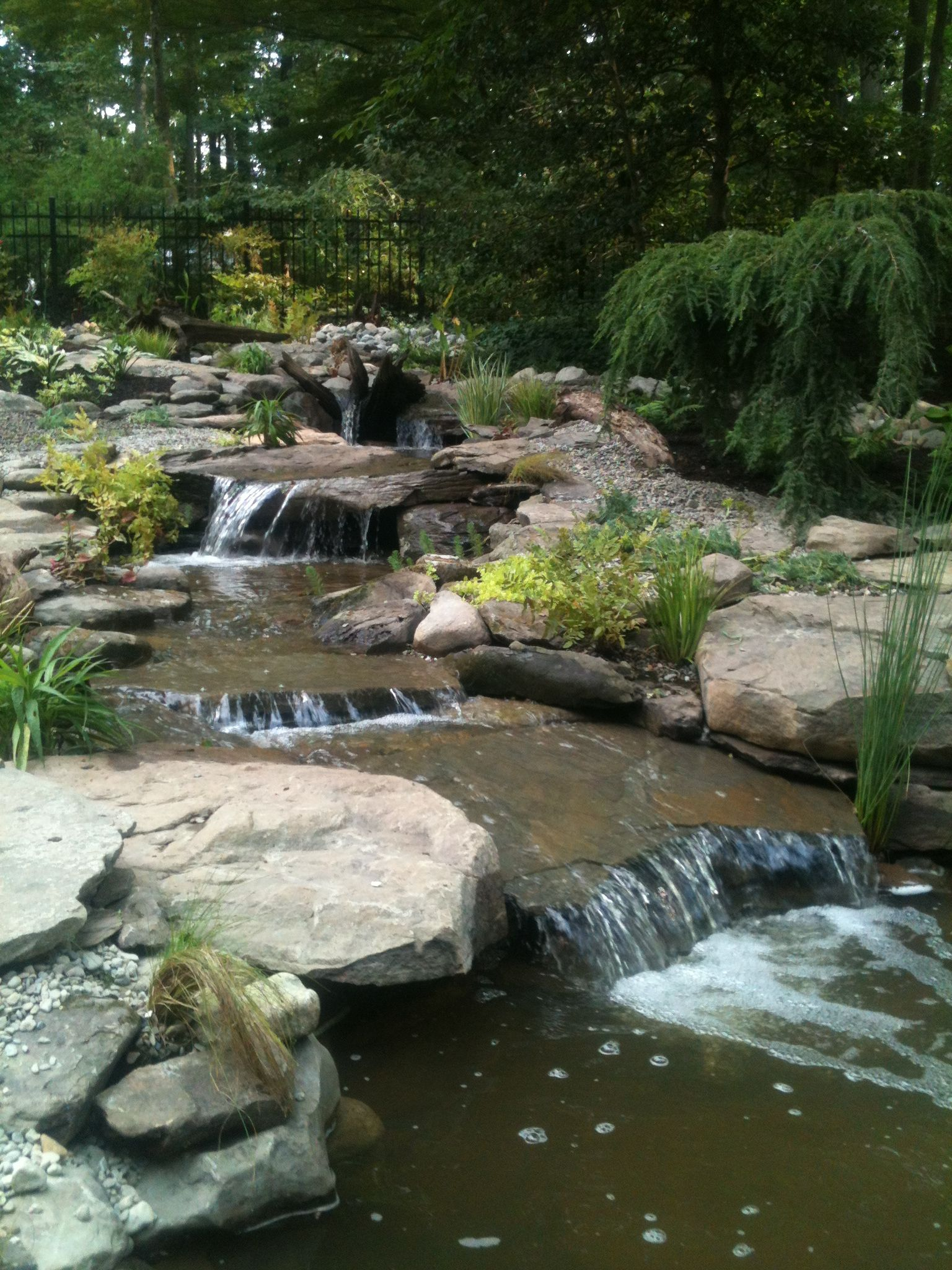 Woodland Oasis Backyard Water Feature Pond Landscaping 400 x 300