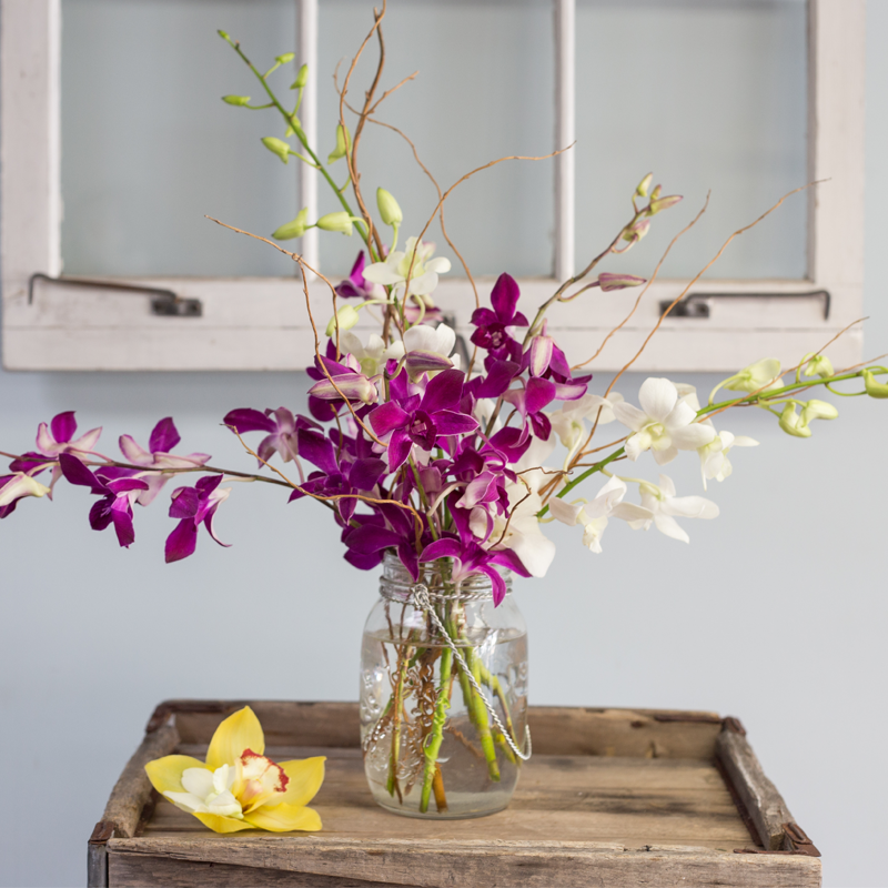 Wedding Flowers Cambridge: Dendrobium Orchid Mason Jar In Cambridge, MA