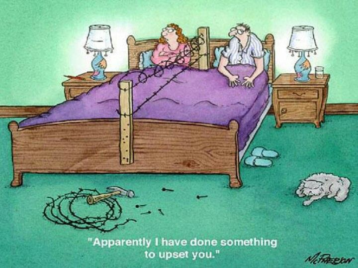 Ha Ha I Wonder If Chicken Wire Would Work Funny Bedroom Funny Pictures Marriage Cartoon