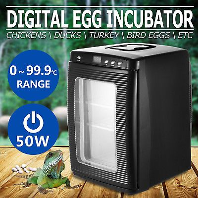 Reptile Egg Incubator Chicken Bird Hatching Turner Lizard Snake Led Display With Images Reptile Eggs Pet Turtle Egg Incubator