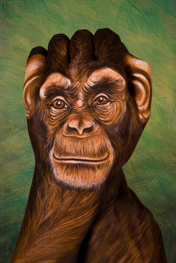 Animal Portraits On Hands Transform Definition Of Hand Painted In 2020 Body Art Painting Hand Painting Art Hand Art