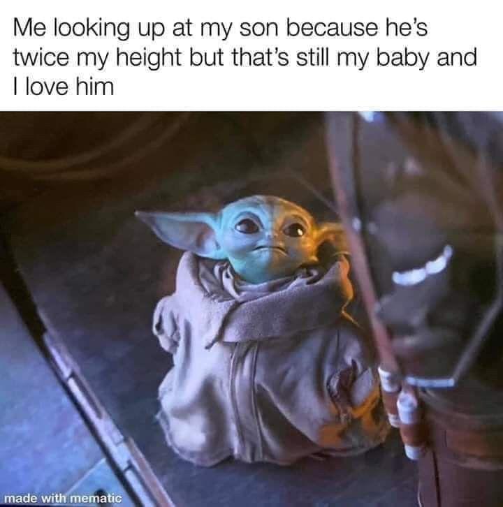 Love My Tall Handsome Little Buddy Star Wars Memes Yoda Meme Funny Memes
