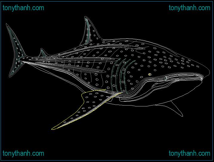 Sperm whaleshark cad block dalmatian shark autocad Opensource cad dwg