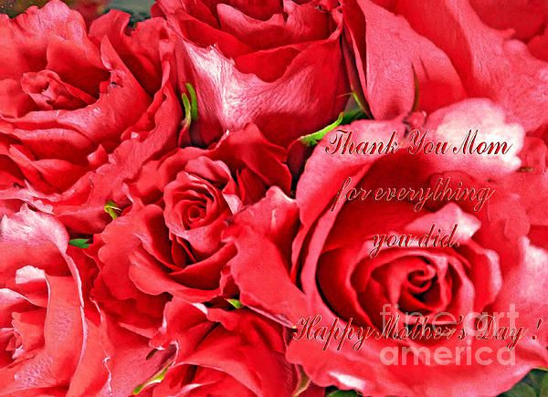 For Mom By Jasna Dragun Beautiful Flowers Photography America Art Mother S Day Greeting Cards