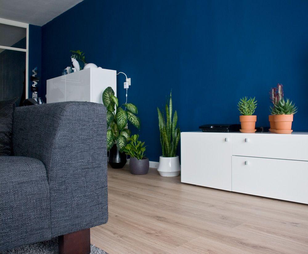 Full indigo home label1114 2 woonkamer muur achter bank pinterest achter bank hondjes en bank - Interieurontwerp thuis kleur ...