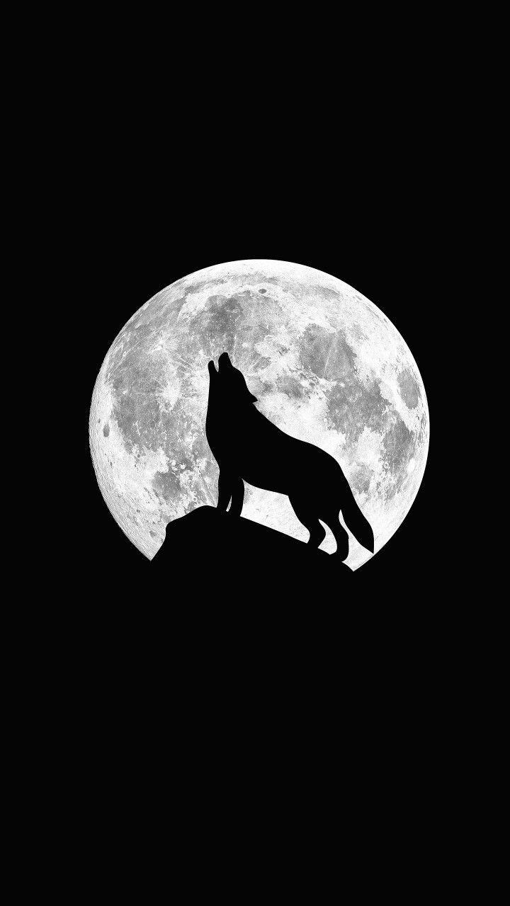 Night Wolf Wolf Wallpaper Wolf Artwork Wolf Background