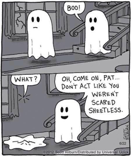 Dont Act Like You Werent Scared Sheetless Funny Funny Quotes Halloween  Ghost Halloween Pictures Happy Halloween Halloween Images Halloween Ideas  Boo ...